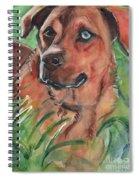 Blue Eyed Dog Spiral Notebook