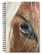 Blue Eyed Horse Spiral Notebook
