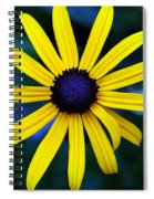 Blue Eyes Spiral Notebook