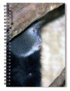 Blue Face Spiral Notebook