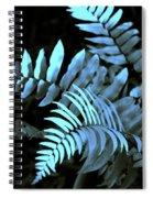 Blue Fern Spiral Notebook