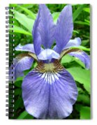 Blue Flag Iris Spiral Notebook