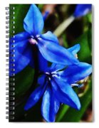 Blue Floral Spiral Notebook