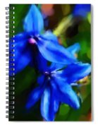 Blue Flower 10-30-09 Spiral Notebook