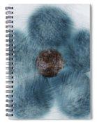 Blue Flower Cloud Spiral Notebook
