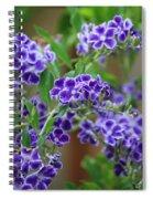 Blue Flowers Card Spiral Notebook