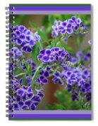 Blue Flowers With Colorful Border Spiral Notebook