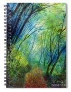 Blue Fog Spiral Notebook