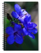 Blue For The Sun Spiral Notebook