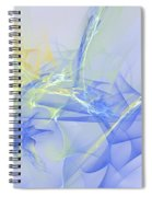 Blue For You Spiral Notebook