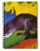 Blue Fox 1911 Spiral Notebook