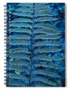 Blue Frond Spiral Notebook
