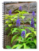 Blue Ginger At The Wall Spiral Notebook