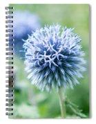 Blue Globe Thistle Flower Spiral Notebook