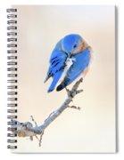 Blue Grace Spiral Notebook