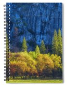 Blue Granite Spiral Notebook