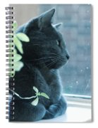 Blue Grey Contemplating Cat Spiral Notebook