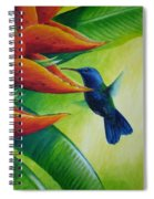 Blue-headed Hummingbird Spiral Notebook