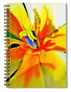 Blue Heart Of The Tulip Spiral Notebook
