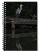 Blue Heron At Dusk Spiral Notebook