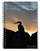 Great Blue Heron At Sunset Spiral Notebook