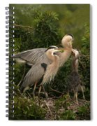 Blue Heron Family Spiral Notebook