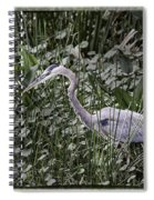 Blue Heron In Grass 4566 Spiral Notebook