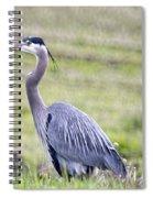 Blue Heron In Northern Wa  Spiral Notebook