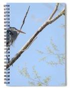 Blue Heron In Tree Spiral Notebook