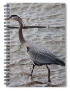 Blue Heron  On The Lake Spiral Notebook