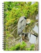 Blue Heron Series Little One Spiral Notebook
