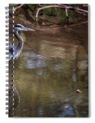 Blue Heron Stalking  Spiral Notebook