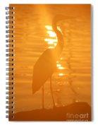 Blue Heron Sunrise Spiral Notebook