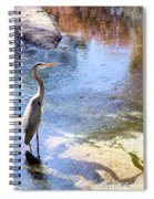Blue Heron With Shadow Spiral Notebook