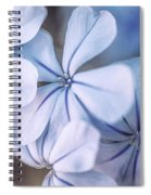 Blue Houres, Blue Flowers Spiral Notebook