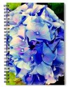 Blue Hues Spiral Notebook