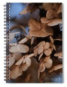 Blue Hydrangea II Spiral Notebook