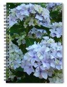 Blue Hydrangeas Art Prints Hydrangea Flowers Giclee Baslee Troutman Spiral Notebook