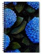 Blue Hydrangeas Spiral Notebook