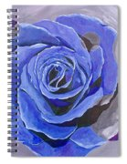 Blue Ice Spiral Notebook