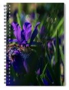 Blue Iris Field  Spiral Notebook