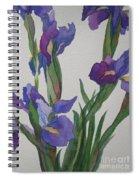 Blue Iris Spiral Notebook
