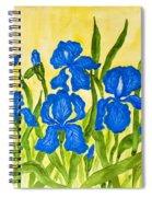 Blue Irises Spiral Notebook