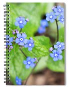 Blue Jack Frost Flowers Spiral Notebook