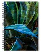 Blue Jay Agave Spiral Notebook