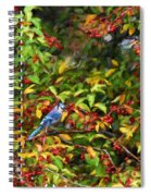 Blue Jay And Berries Spiral Notebook