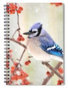 Blue Jay In Snowfall Spiral Notebook