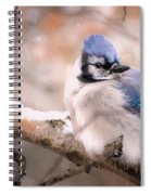 Blue Jay In Winter Spiral Notebook