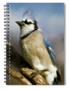 Blue Jay Spiral Notebook