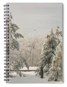 Blue Knob Winter Spiral Notebook